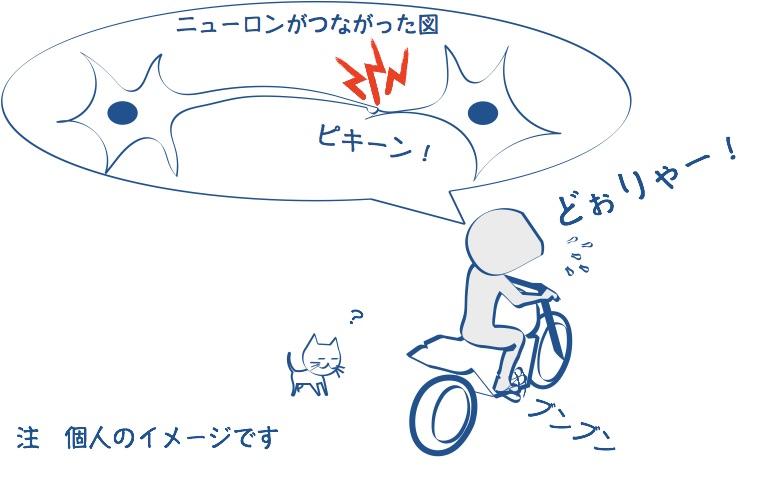 バイクに乗って右足を動かすにゆーろんがつながった絵の図