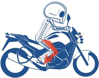 バイク乗るときは下半身の骨格も大切の絵の図