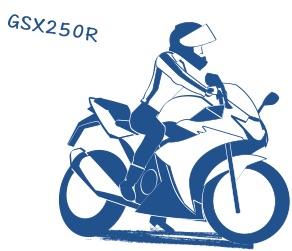 GSX250Rの図