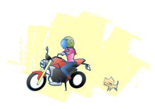 バイクに乗る理由の図